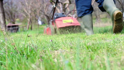 Male gardener working with lawnmower in orchard.