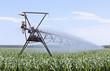 Irrigating Corn - 67037867