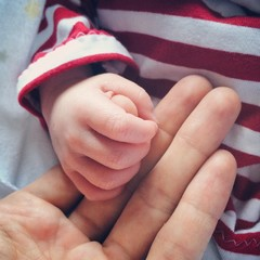 Little fingers of a newborn