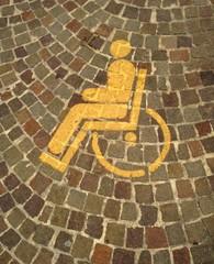 portatore handicap