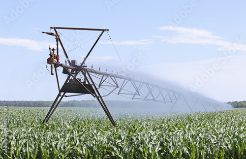 canvas print picture Irrigating Corn