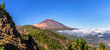 Leinwanddruck Bild - Panoramic of the Teide and Orotava Valley