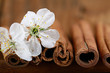 cherry flowers and twigs on a wooden background