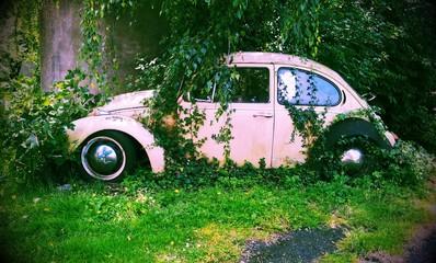 Oldtimer - VW Kaefer