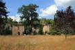 Ruines du château de Marqueyssac.