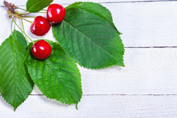 Three Cherries On White Boards