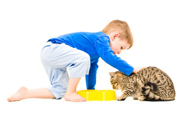 Cute boy petting a cat while eating