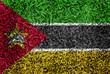 Mozambique Flag color grass texture background