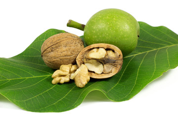 Green walnut and ripe cracked walnut on green leaf isolated