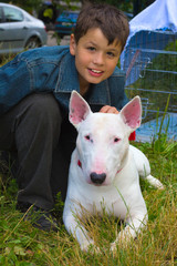 Boy and white Bull Terrier Dog breed