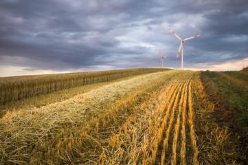 Turbiny wiatrowe na polach zboża,Niemcy