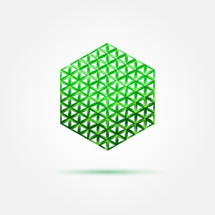 Green vector isometric cube icon made with triangles - abstract
