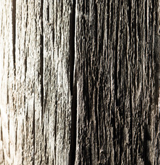 abstract background of old wood