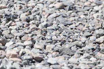 background of stones