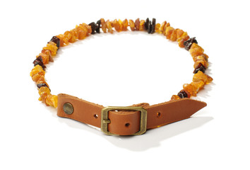 Flea and tick amber collar for pets
