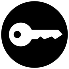 Key in circle vector icon