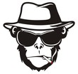 MONKEY HEAD SMOKE - 67067026