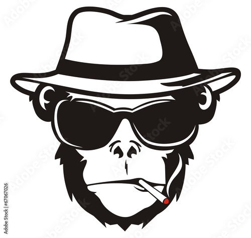 Leinwanddruck Bild MONKEY HEAD SMOKE