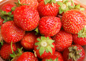 Tasty and ripe berry strawberries