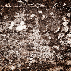 Background series: texture of the wall