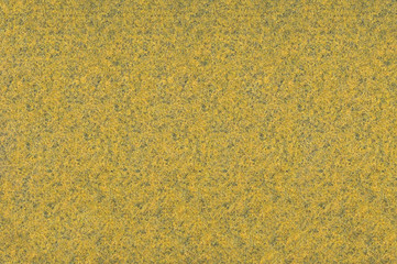 Yellow carpet texture