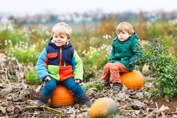 Two little siblings sitting on big pumpkin on cold autumn day