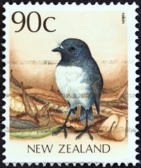 New Zealand robin (New zealand 1988)