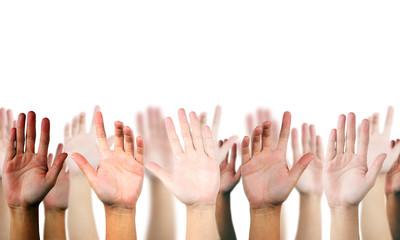hand raised up on white isolated background