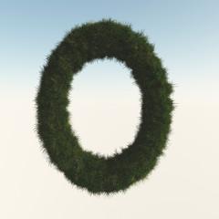トーラス型から芝生