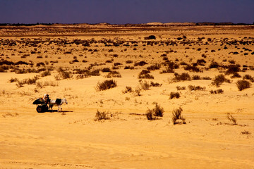 people in the desert of sahara