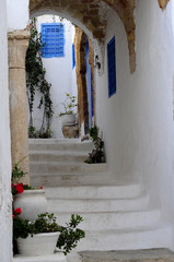 Street of Sidi Bou Said