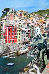 Bright houses in the village Riomaggiore. Cinque Terre