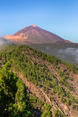 Orotava Valley with the Teide at the end, Tenerife