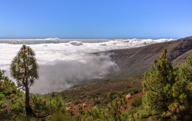 Fog bank over Teide Natural Park, Tenerife