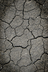 cracked ground for background