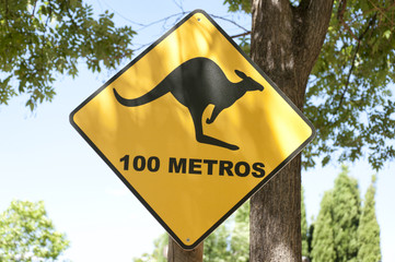 Kangaroo warning traffic sign