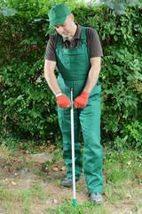 Gärtner arbeitet mit Unkrautstecher im Garten