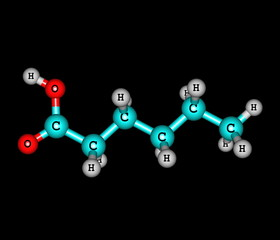 Hexanoic (caproic) acid molecule isolated on black