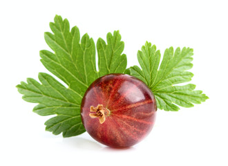 Red gooseberry with a leaf.