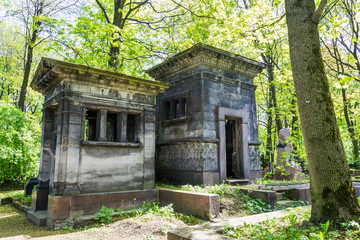 The ancient tomb (the crypt) in the forest. The ancient cemetery
