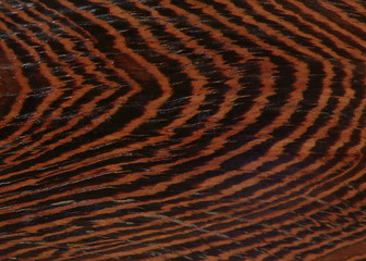 tiger texture of wood background