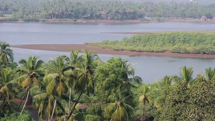 top view on river in indian jungle