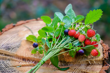 Bouquet of wild berries