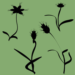 Vector silhouettes of flowers.