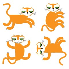 orange cats vector illustration