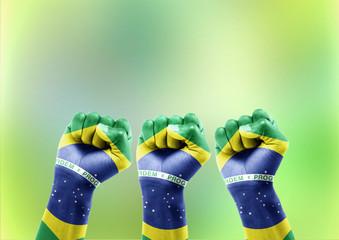Comoração da Torcida Brasileira