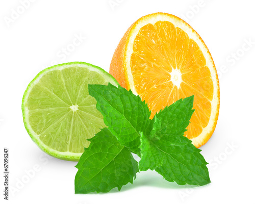 canvas print picture citrus fruits