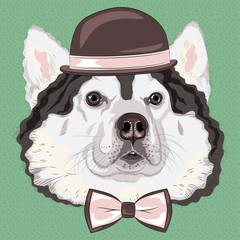 vector funny cartoon hipster Alaskan Malamute dog