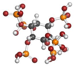 Phytic acid (hexakisphosphate, IP6, phytate) molecule.