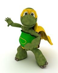 tortoise superhero